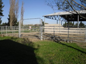 JC RANCH.2